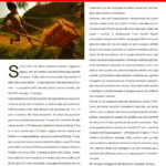 a_sud_europa16-6-08_pagina_18
