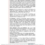 unipa-ateneo11-11-08_pagina_2